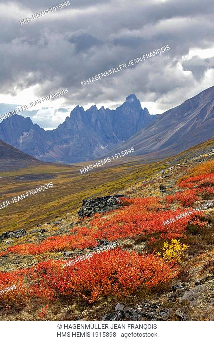 Canada, Yukon province, Dawson,Tombstone mountains in autumn colors