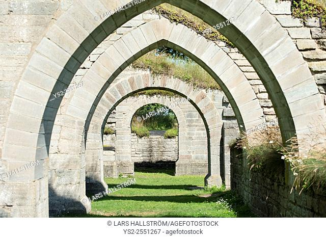 Alvastra monastery ruin in Ostergotland, Sweden