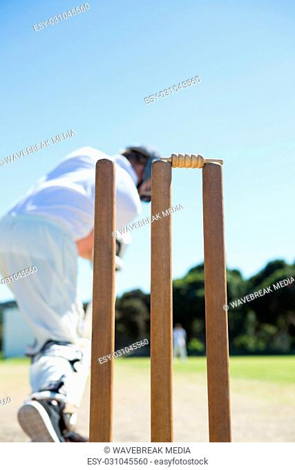 Close up of stump by batsman standing on field