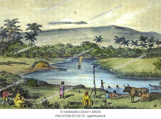 c.1855 Hawaii, Big Island, View of land scenery of Hilo with farm animals, locals and palm trees