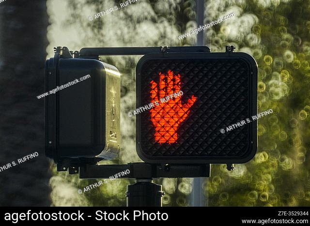 "Red traffic light designating """"Do not Cross. """""