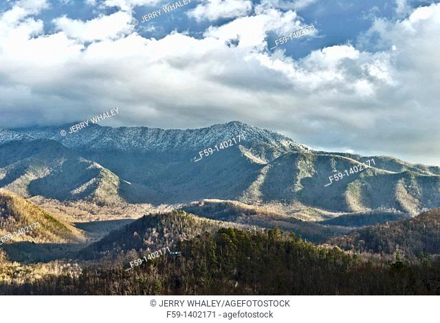 Mt LeConte, Frost Great Smoky Mountains National Park, TN, Usa