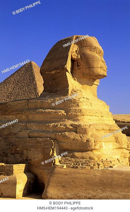 Egypt, Cairo, Guizeh, listed as World Heritage by UNESCO, the Sphinx
