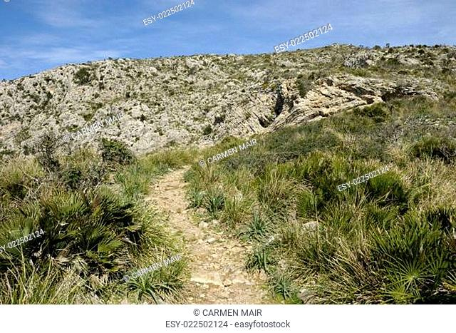 Wanderweg am Talaia de Alcudia