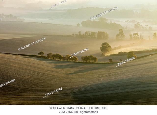 Misty sunrise in South Downs National Park near Alfriston, East Sussex, England