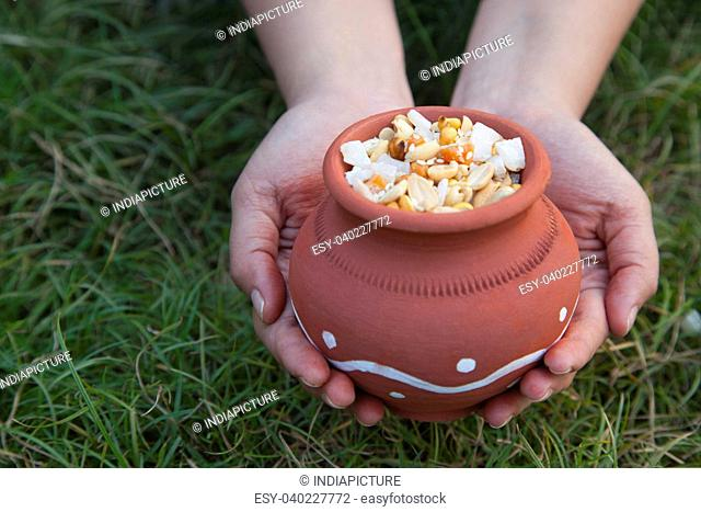 Hands holding pot with variety of ingredients