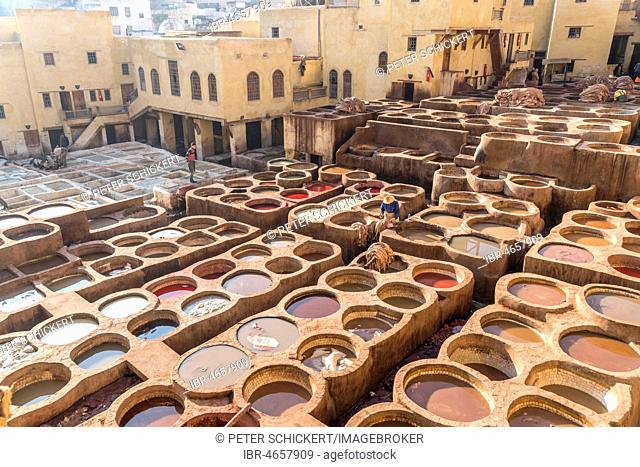 Leather dyeing tanks, dyeing plant, Tannerie Chouara tannery, Fes el Bali tannery and dyeing district, Fez, Morocco