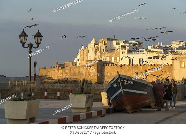 city wall and medina on the coast in Essaouira, Kingdom of Morocco, Africa