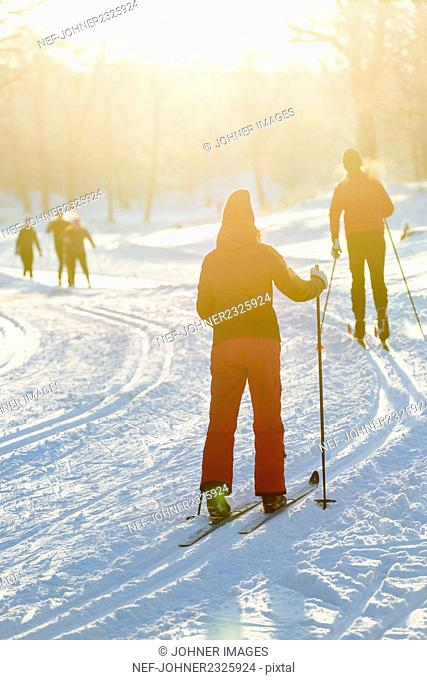 Group of people cross-country skiing