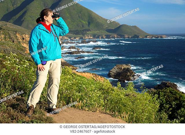 Birding above rocky coast, Garrapata State Park, Big Sur Coast Highway Scenic Byway, California
