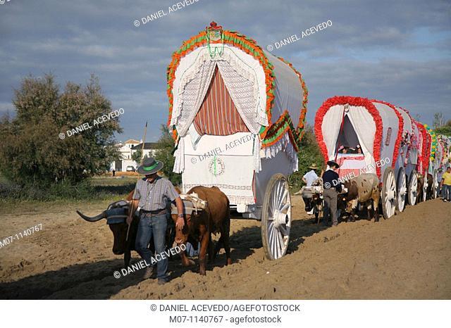 Pilgrims walking the Way to El Rocio, Almonte, Huelva, Andalusia, Spain