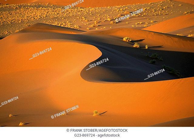 Namibia - Desert impressions
