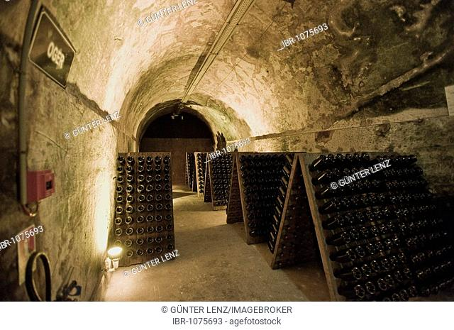 Mumm Champagne cellar, Reims, Champagne-Ardennes, France
