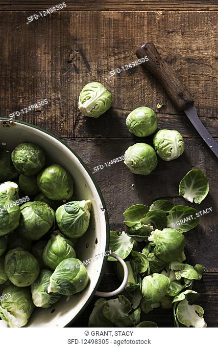 Fresh sprouts being prepared