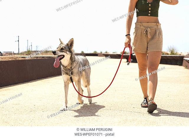 Young woman going walkies with her dog, partial view
