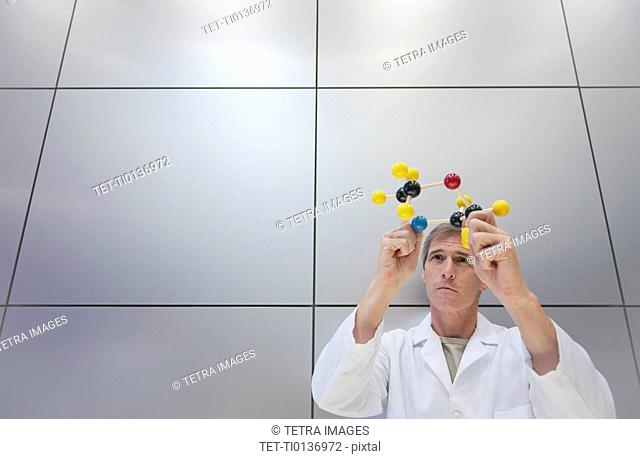 Reseacher holding molecular model