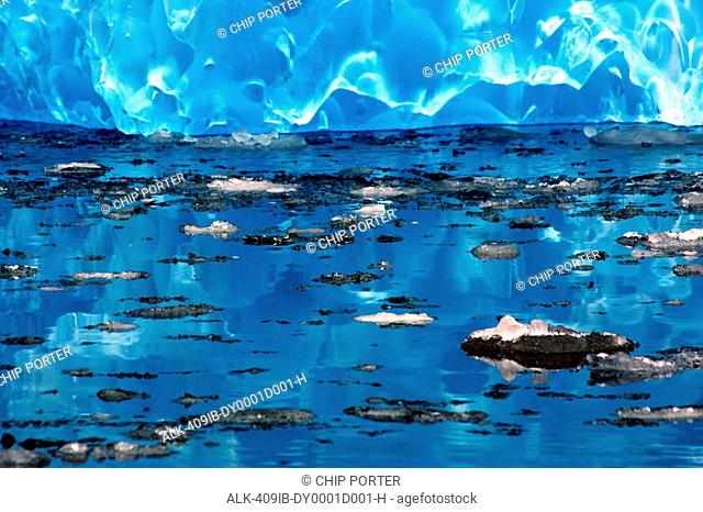 Tiny pieces of ice float near an iceberg in LeConte Bay, Southeast, Alaska