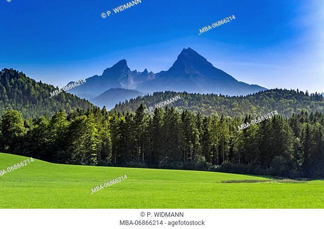 Scenery with Watzmann massif, close Berchtesgaden, Bavaria, Upper Bavaria, Germany, Europe