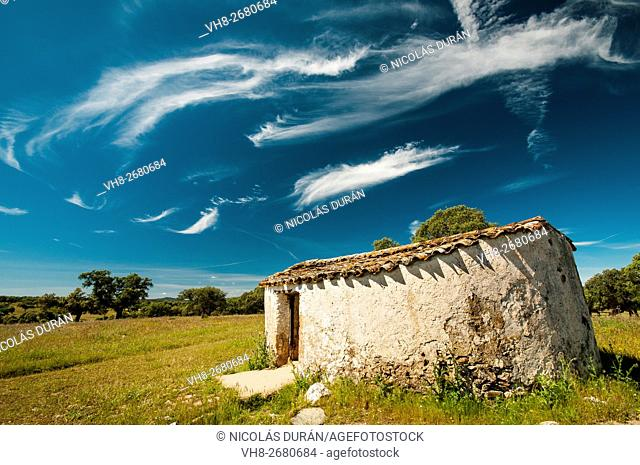 Traditional pastoralist construction in holm oak dehesa. Sierra de San Pedro. Badajoz. Extremadura. Spain