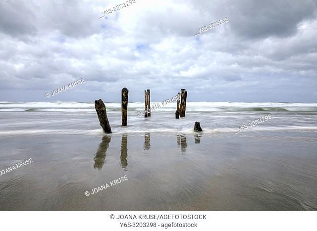 Saint Clair Beach, Dunedin, South Island, New Zealand