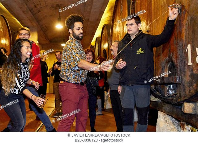 Tourists on a guided tour, Txotx, Cider barrels, Sidreria Petritegi, Astigarraga, Gipuzkoa, Basque Country, Spain, Europe