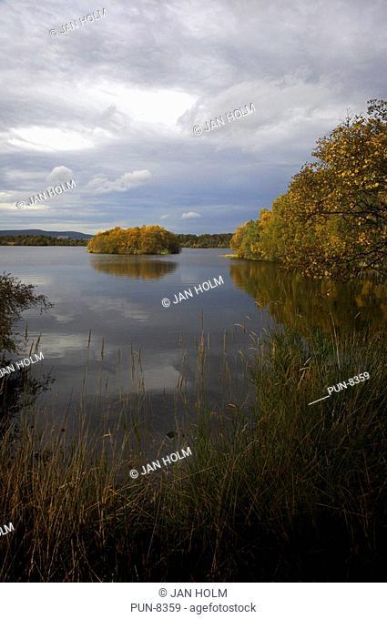 Loch Kinord in October light