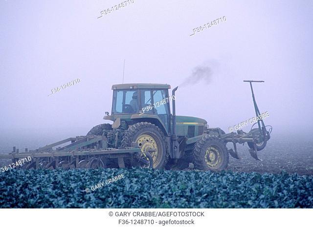 Farm plow tractor in fog shrouded field, near Guadalupe, Santa Maria Valley, San Luis Obispo County, CALIFORNIA