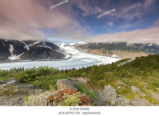 The Salmon Glacier in northwestern British Columbia north of Stewart BC and Hyder Alaska - from a viewpoint below the summit showing how the glacier flows like...