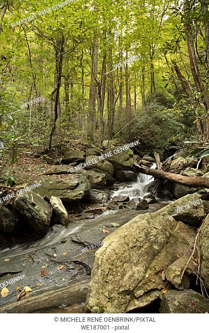 Catawba Falls Trail east of Asheville North Carolina hiking trail, trekking through a mossy, shady forest valley to beautiful waterfalls in the Pisgah National...