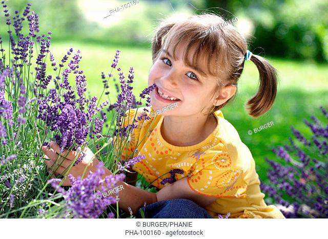 7 years old girl picking lavender blossoms