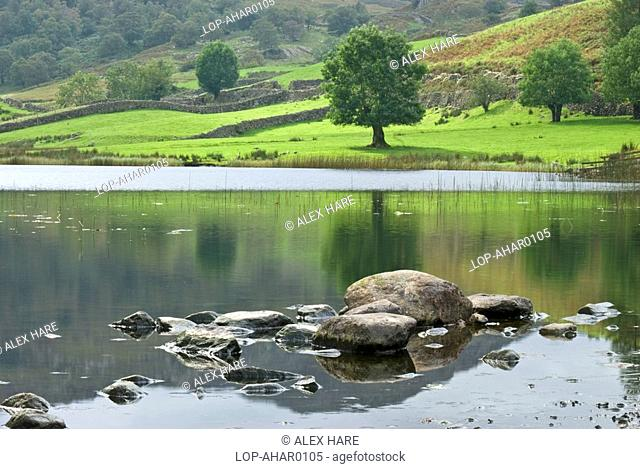 England, Cumbria, Watendlath, A view over rocks emerging from Watendlath Tarn to dry stone walls and hills in Cumbria