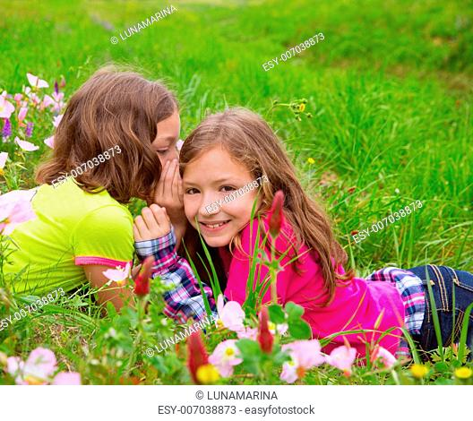happy twin sister girls playing whispering ear on spring flowers meadow