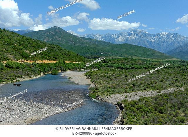 From the Pont de Cinq Arcades to the riverbed of the Fangu or Fango, near Galeria, with the Monte Cinto, Haute-Corse, Corsica, France
