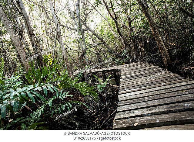 San felipe, Ria Lagartos Biosphere Reserve, Yucatan Peninsula, México