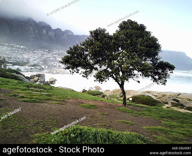 View of Camps Bay from Maiden's Cove - Parking, Clifton, Cape Town, South Africa. Photo: André Maslennikov