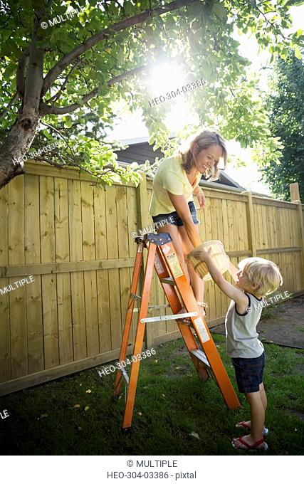 Mother and son with ladder and bushel harvesting apples from tree in sunny backyard