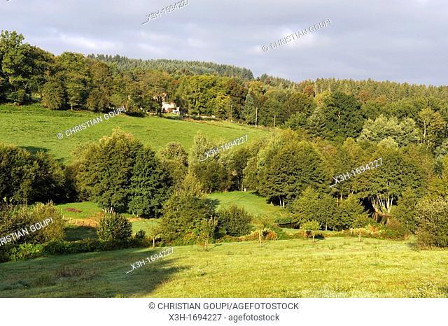 view over countryside from Les Roulottes du Livradois, Cunhat, Livradois-Forez Regional Nature Park, Puy-de Dome department, Auvergne region, France, Europe