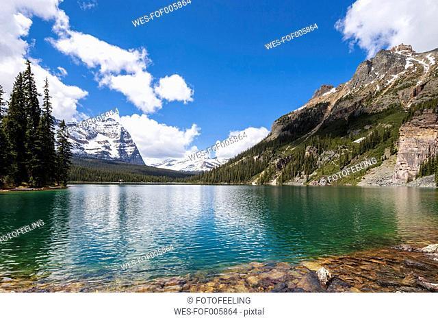 Canada, British Columbia, Yoho Nationalpark, Lake O'Hara with mountains