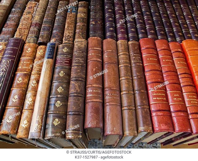 Leather bound classical books