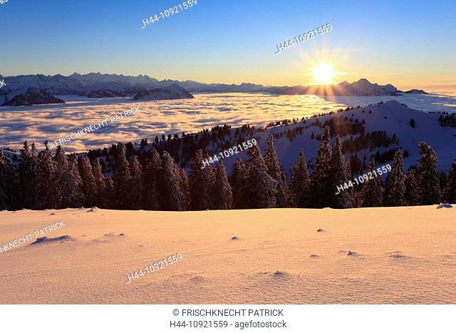 Evening, evening light, Alp, Alps, afterglow, alpenglow, view, mountain, mountains, mountain, mountain panorama, Bernese Alps, mountains, back light