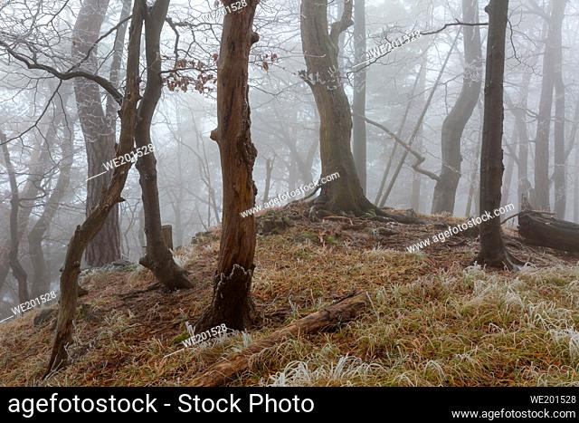 National park of Velka Fatra in northern Slovakia