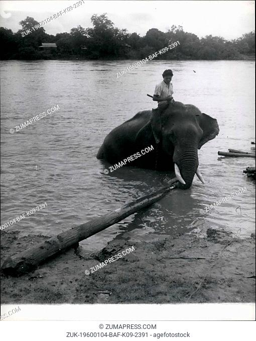 Feb. 24, 1972 - Smaller logs are used to knit together the large trees of the raft. The elephants get right into the water to assist in the making up of the...