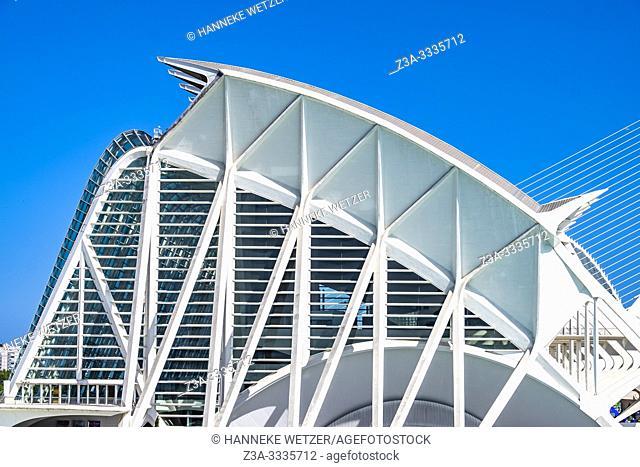 Science museum in Valencia, City of Arts and Science, Ciudad de las artes y las ciencias, Spain, Europe