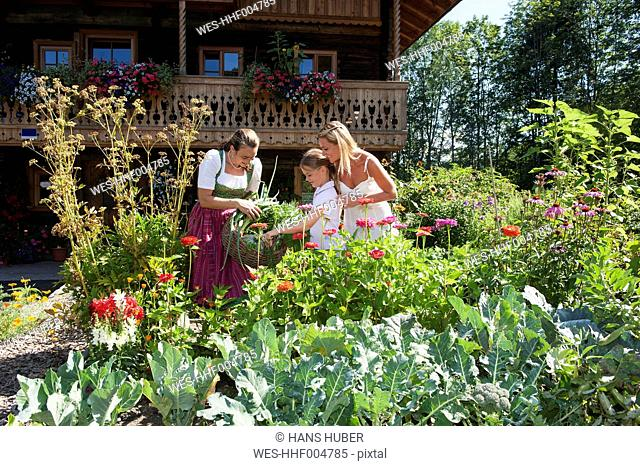 Austria, Altenmarkt, Mother and child watching farmer in garden