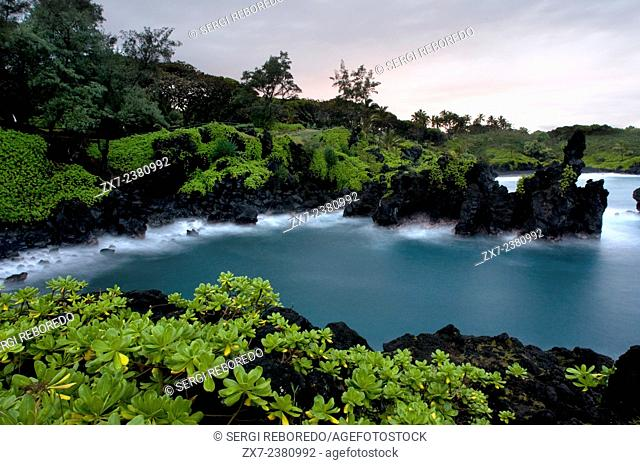 Wai'anapanapa State Park. A leafy location with sea caves and volcanic cliffs. Hana Highway. Maui. Hawaii. This is a great stop in the Road to Hana
