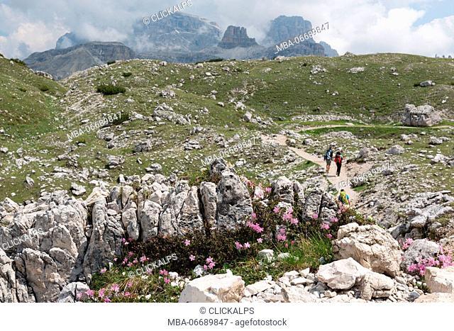 Europe, Italy, Dolomites, Belluno, Bolzano, Park of Tre Cime di Lavaredo. Hikers