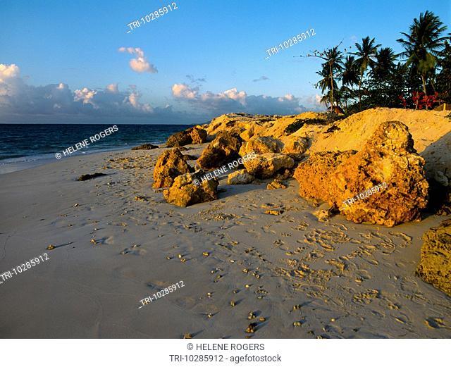 Pigeon Point Tobago Beach