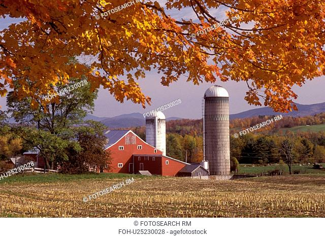 Vermont, barn, farm, Colorful fall foliage in the foreground of a red barn in Danby Four Corners