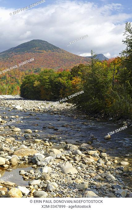 Autumn foliage on Big Coolidge Mountain from along the East Branch of the Pemigewasset River in Lincoln, New Hampshire on a cloudy autumn day