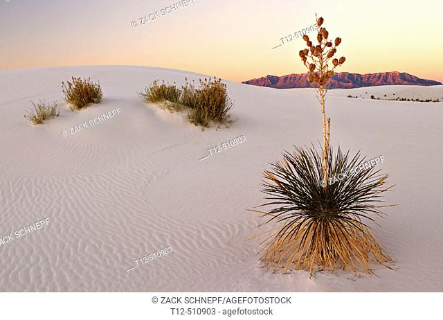 Sunrise in White Sands New Mexico
